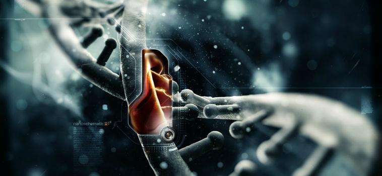 La Importancia del Glutatión (GSH) en el Cuerpo