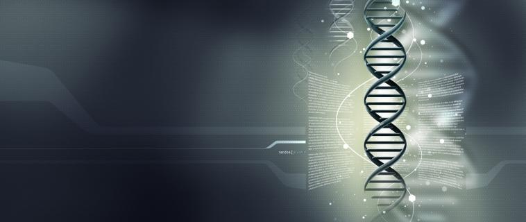 El Equipo de Científicos Genios detrás de Immunocal